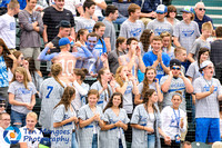Auburn vs Dover-Sherborn Baseball State Final 2017-0258